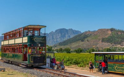 On a vintage double-decker wine tram, tour South Africa's vineyards.